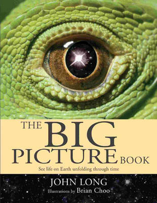 The Big Picture Book See life on earth unfolding through time by John A. Long