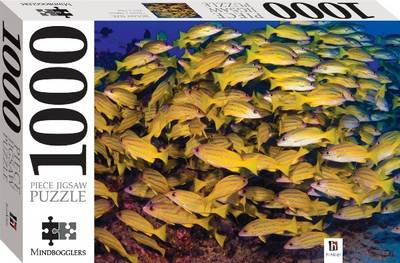 1000 Piece Jigsaw: Blue Snapper by Hinkler Books PTY Ltd