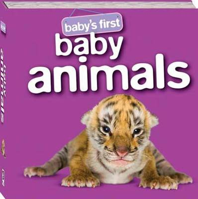 Baby Animals by Hinkler Books PTY Ltd
