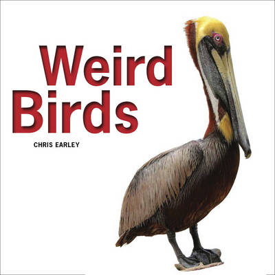Weird Birds by Chris Earley