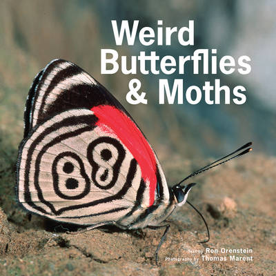 Weird Butterflies & Moths by Ronald Orenstein, Thomas Marent