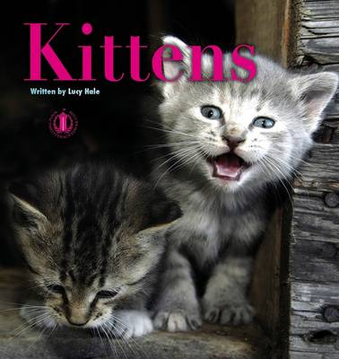 Kittens by Lucy Hale