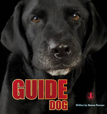 Guide Dog by Sharon Parsons