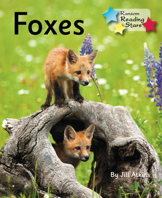 Foxes by
