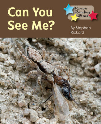 Can You See Me by Stephen Rickard