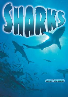 Sharks by John Townsend