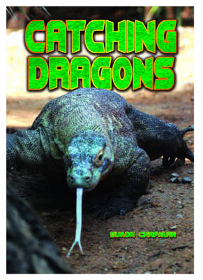 Catching Dragons by Simon Chapman