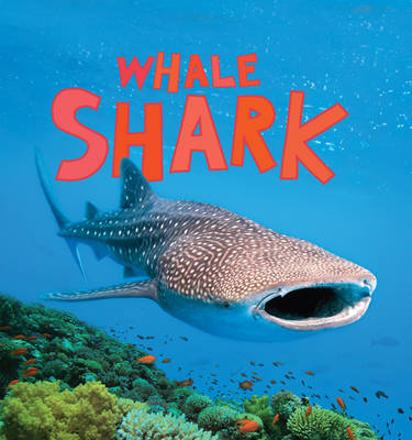 Discover Sharks: Whale Shark by Camilla de la Bedoyere