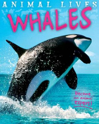 Animal Lives: Whales by Sally Morgan