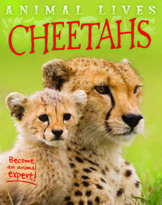 Animal Lives: Cheetahs by Sally Morgan