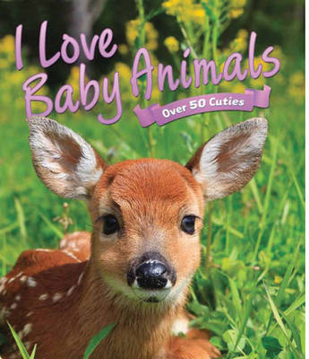 I Love: Baby Animals by Camilla de la Bedoyere