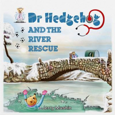 Dr Hedgehog and the River Rescue by Jerry Mushin