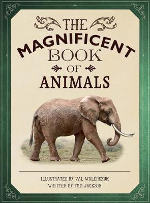 The Magnificent Book of Animals by Tom Jackson