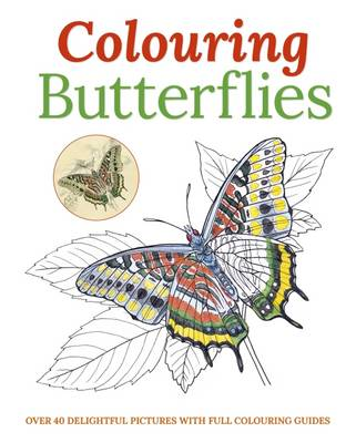 Colouring Butterflies by Arcturus Publishing