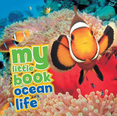 My Little Book of Ocean Life by Camilla de le Bedoyere