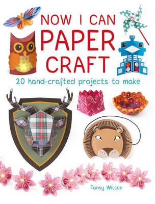 Now I Can Paper Craft 20 Hand-Crafted Projects to Make by Tansy Wilson