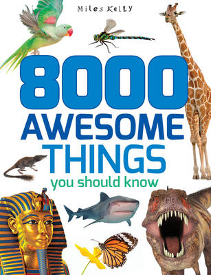 8000 Awesome Things You Should Know by Miles Kelly
