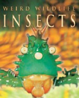 Insects by Anna Claybourne