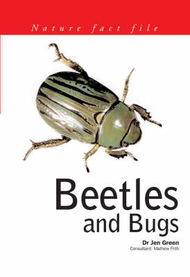 Beetles and Bugs by Jen Green