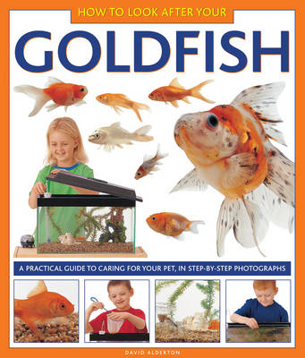 How to Look After Your Goldfish a Practical Guide to Caring for Your Pet, in Step-by-step Photographs by David Alderton