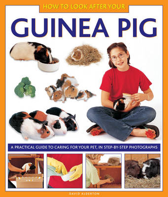 How to Look After Your Guinea Pig A Practical Guide to Caring for Your Pet, in Step-by-step Photographs by David Alderton