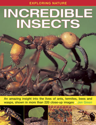 Exploring Nature: Incredible Insects An Amazing Insight into the Lives of Ants, Termites, Bees and Wasps, Shown in More Than 220 Close-up Images by Dr Jen Green