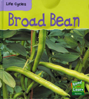Broad Bean by Richard Spilsbury