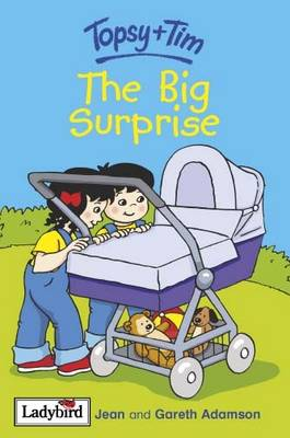 The Big Surprise by Gareth Adamson, Jean Adamson