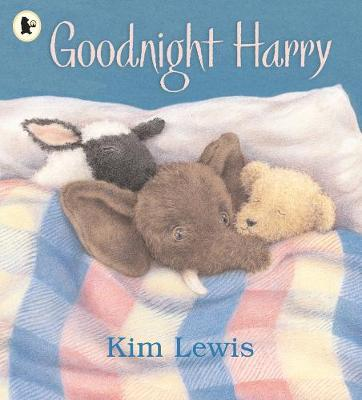 Goodnight Harry by Kim Lewis