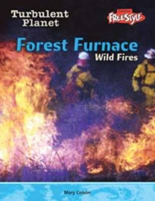 Forest Furnace Wild Fires by Carol Baldwin