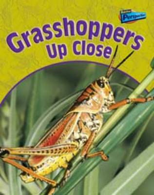 Grasshoppers Up Close by Greg Pyers