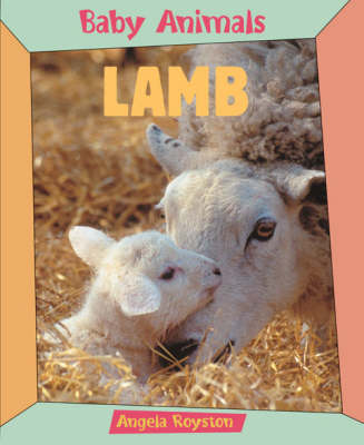 Lamb by Angela Royston
