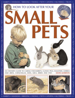 How to Look After Your Small Pets An Owner's Guide to Caring for Rabbits, Guinea Pigs, Hamsters, Gerbils and Jirds, Chinchillas, Rats, Mice, Birds and Fish by David Alderton
