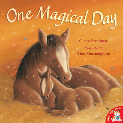 One Magical Day by Claire Freedman, Tina MacNaughton