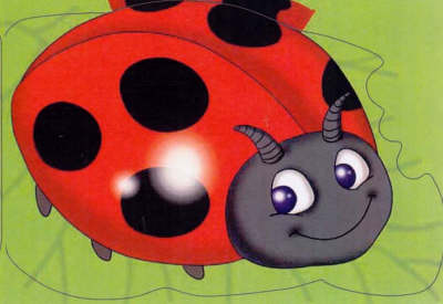 Ladybird Chunky Animals by Kay Massey