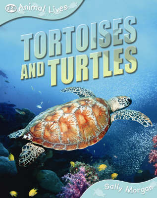 Tortoises and Turtles by