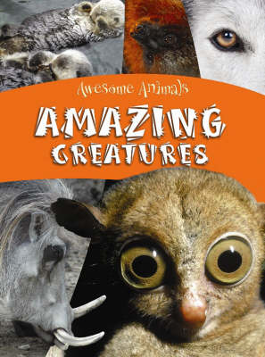 Amazing Creatures by Lynn Huggins-Cooper