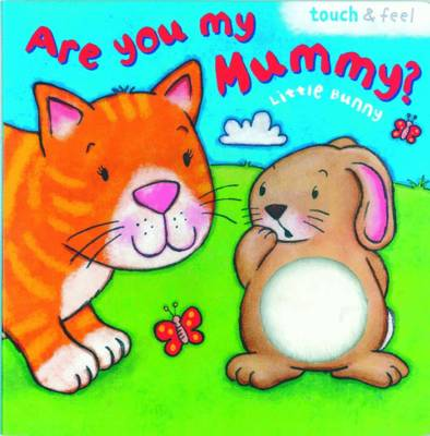 Little Bunny: Are You My Mummy? by