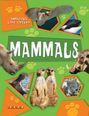 Amazing Life Cycles: Mammals by TickTock, Honor Head