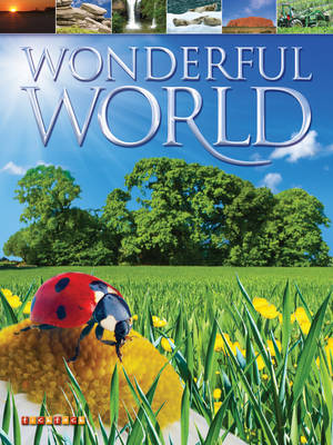 Wonderful World by