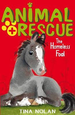 The Homeless Foal by Tina Nolan