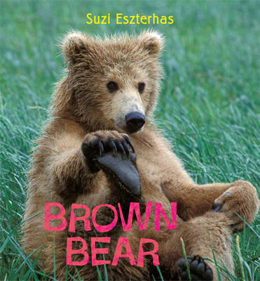Brown Bear by Suzi Eszterhas