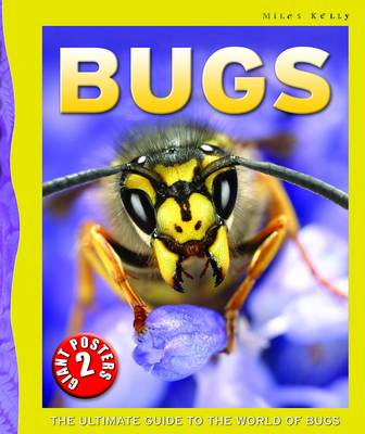Bugs Poster Book by Tom Jackson