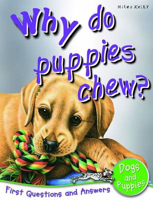 Why Do Puppies Chew? First Questions and Answers Dogs & Puppies by Camilla De la Bedoyere