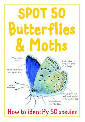 Spot 50 Butterflies & Moths by Belinda Gallagher