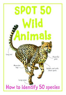 Spot 50 Wild Animals by Sally Morgan