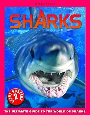 Sharks Poster Book by Anna Claybourne