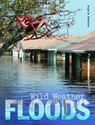 Floods by Angela Royston