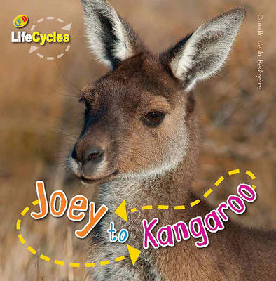 Joey to Kangeroo by Camilla De la Bedoyere