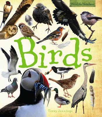 Birds by Terry Jennings